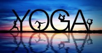 Vinyassa Slow Flow Yoga (Holiday Session)